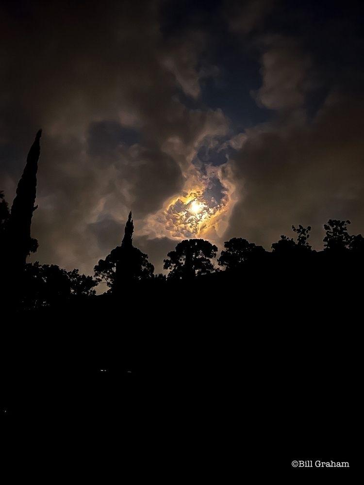 thinking photo buck moon. calle - bgfl   ello