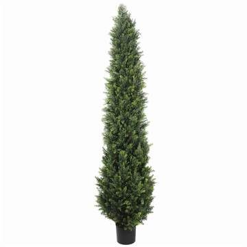 Artificial Cypress Trees Online - designerverticalgardens   ello