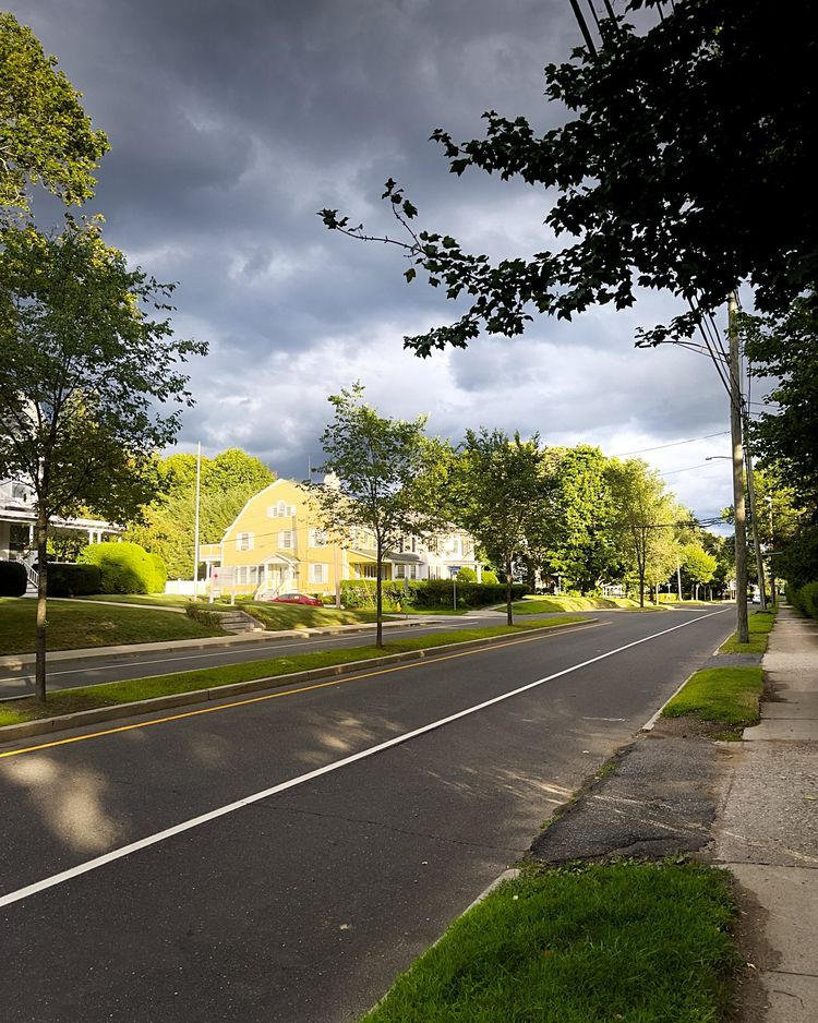 Summer rains, predict :copyrigh - photografia | ello