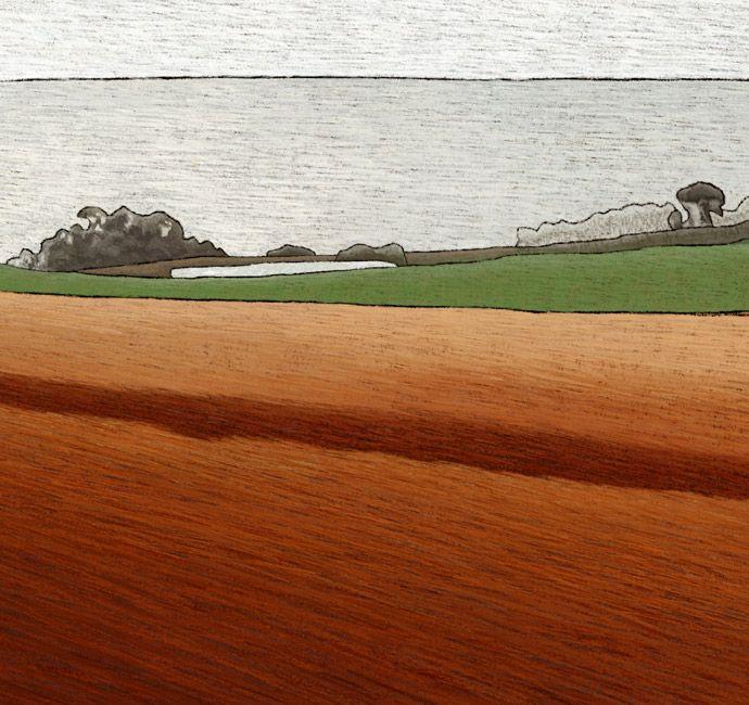 West Wynyard, Tasmania - detail - juliannewmanartist   ello