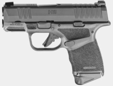 HS Product H11 RDR - Springfiel - kgarms   ello