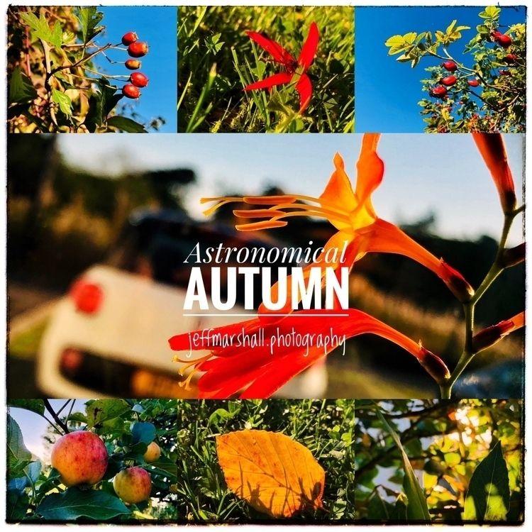 season enjoying fullness life  - jeffmarshall | ello