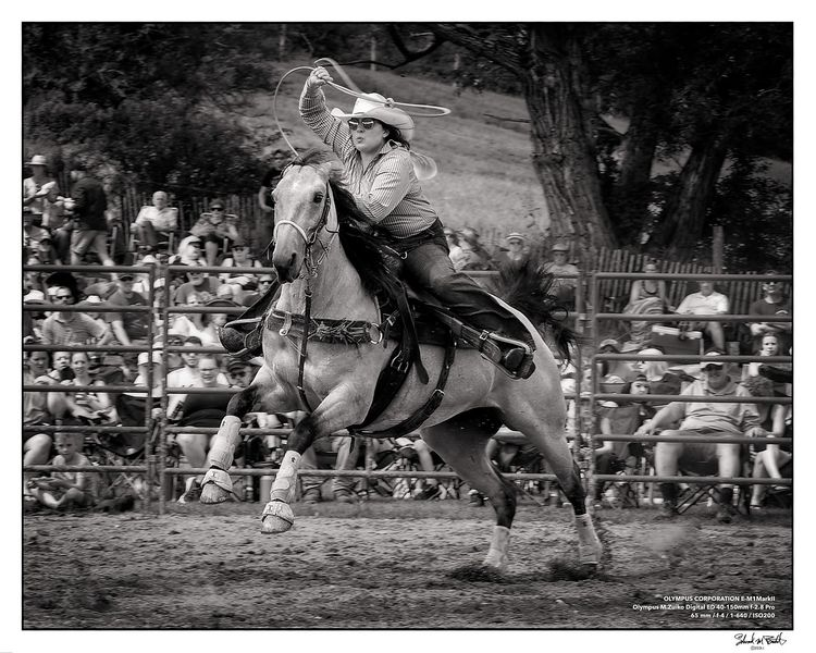 Ellicottville Rodeo - Ride 'em  - neurodancer   ello