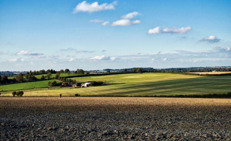 landscape Winnall Winchester, i - neilhowardphotos   ello