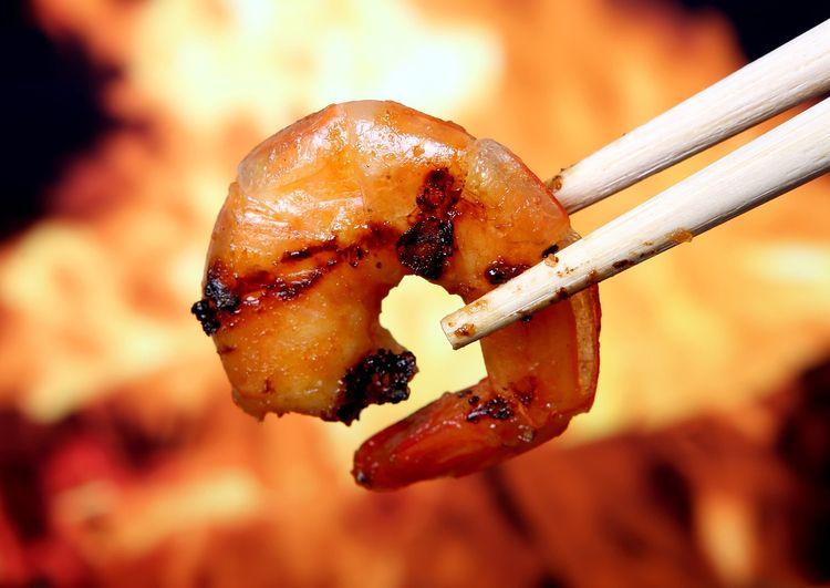 5 Cool Shrimp Facts wonderful p - vibhanshu_goyal | ello