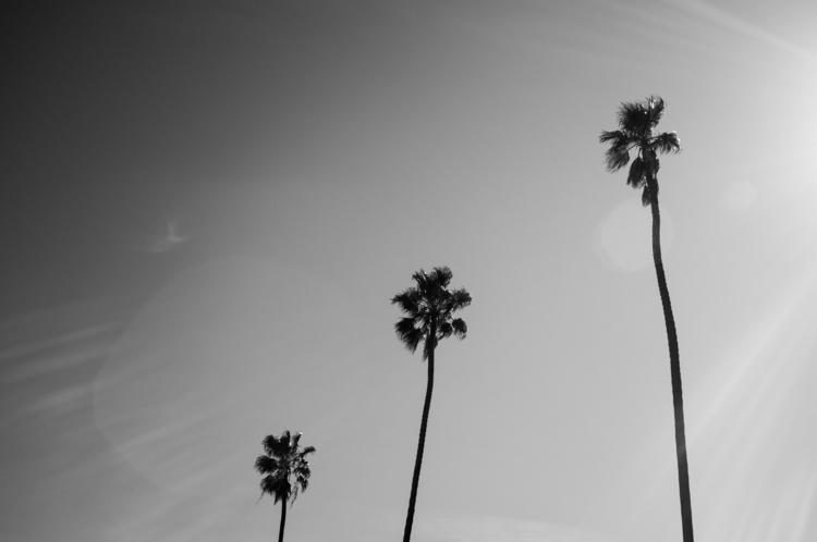 02.04.16.Santa.Monica (5 of 25).jpg