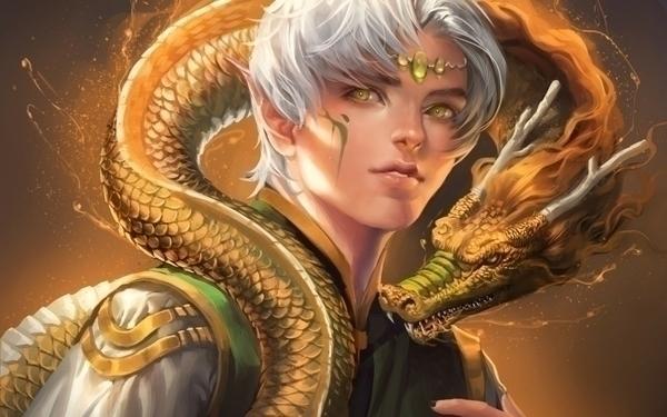 dragons fantasy art elves artwork anime white hair_www.wall321.com_71.jpg