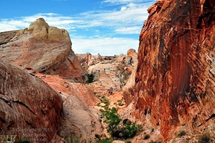 Red Rock Cañón small.jpg