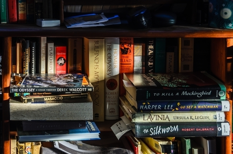 Bookshelf morning light-4928 x 3264-D7K_0364-1.jpg
