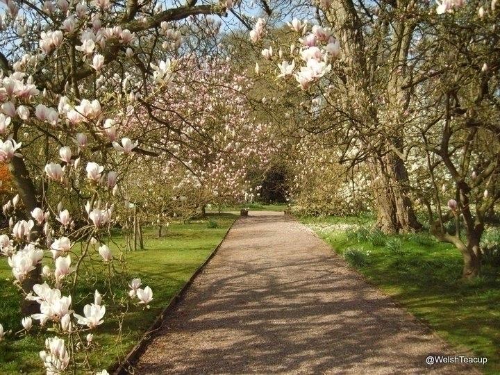 1-Hodnet Garden 2.jpg