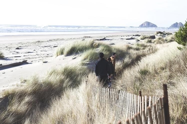 Beach_Fence.jpg
