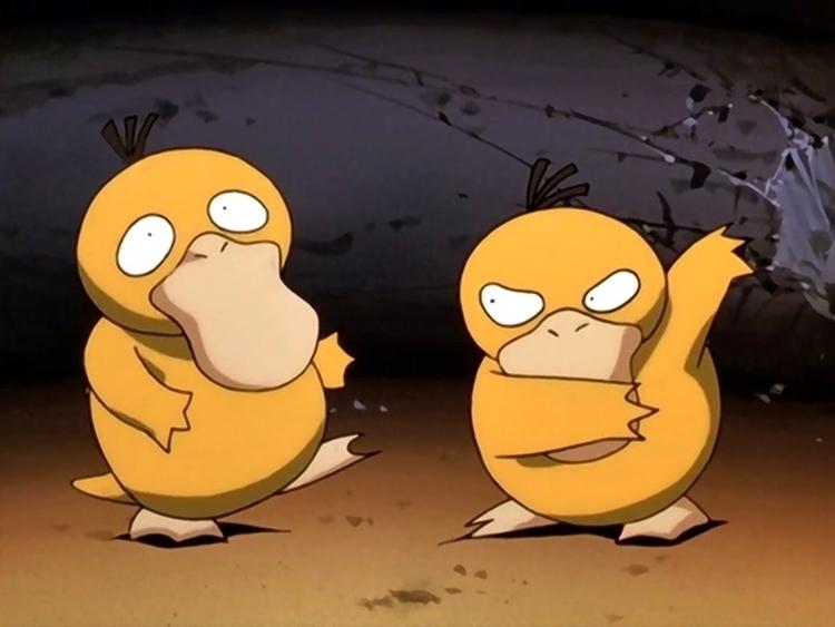 pokemonfacts-01-psyduck.jpg