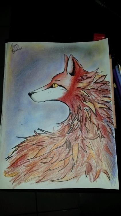 Fox Draw.jpg