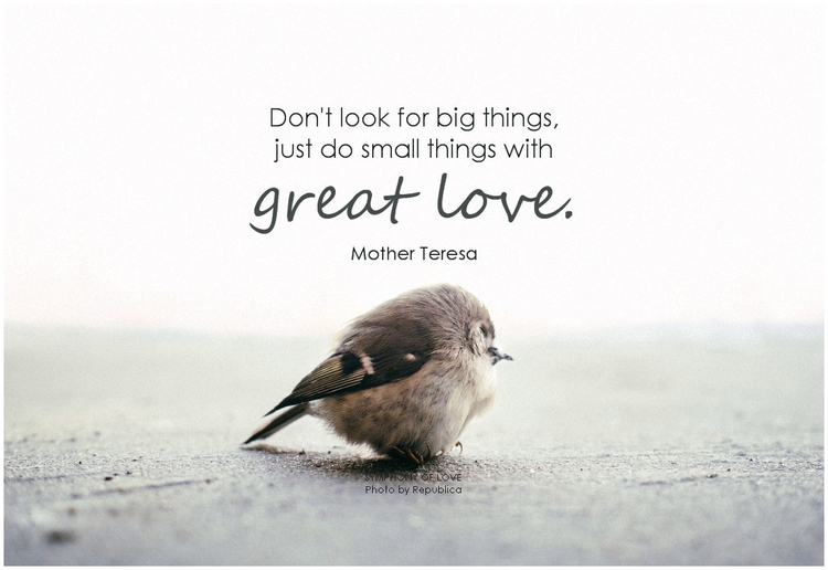 Mother Teresa Don't look for big things, just do small things with great love.png