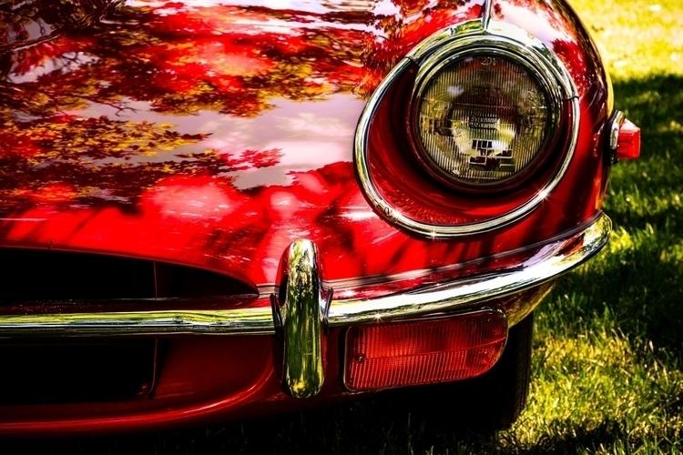 jaguar e-type headlight.jpg