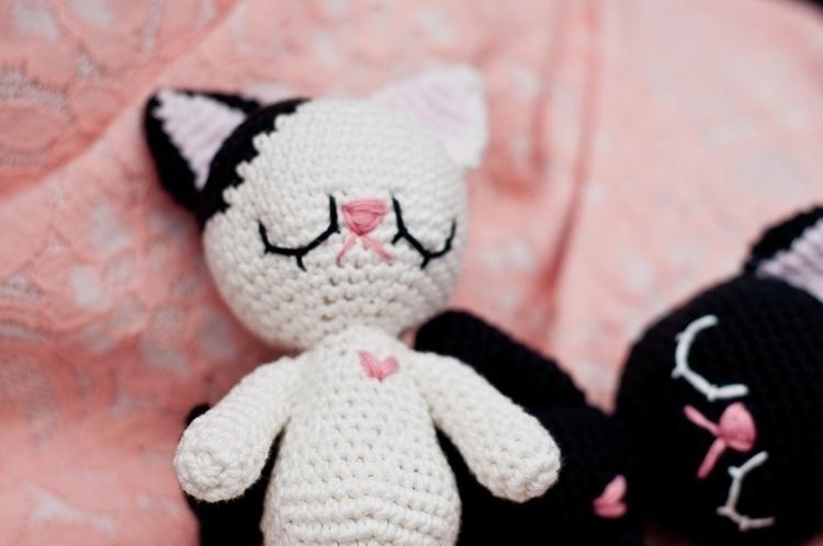 Baby gatitos P16-31.jpg