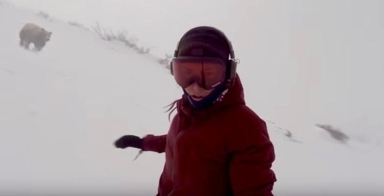 snowboarderbear1.jpg