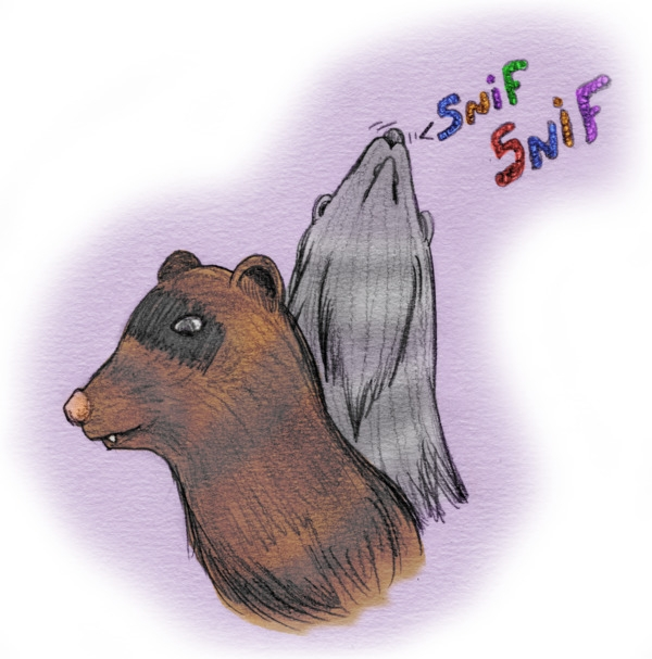 ferrets_snif_by_theflyinferret-d9g6b3w.png