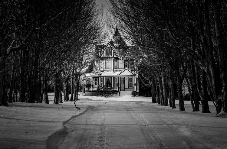 House at the end of the lane-1.jpg