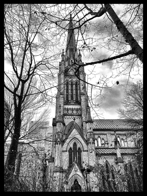 Dramatic skies lovely cathedral - raynanator | ello