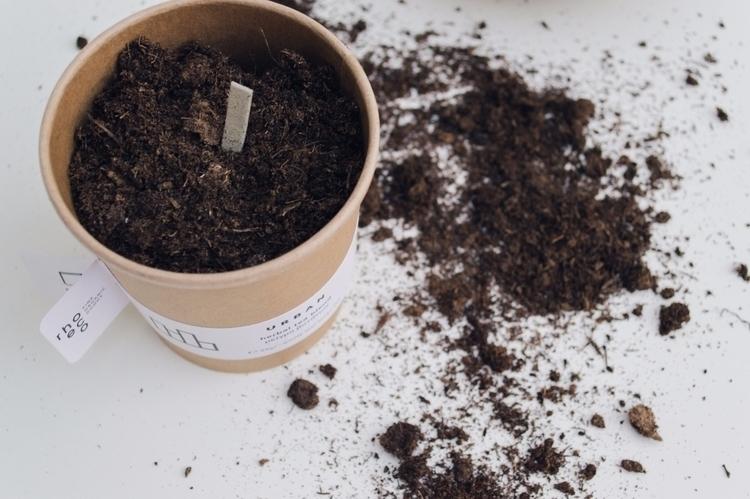 rhoeco | concept DRINK IT_PLANT - rhoeco_fineorganicgoods | ello