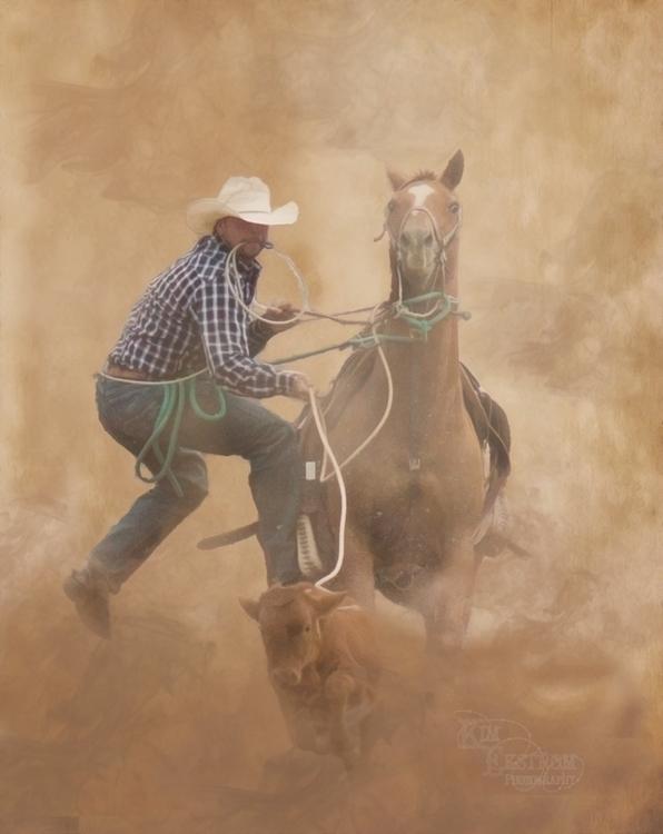 Calf roper... - kimekstromphotography | ello