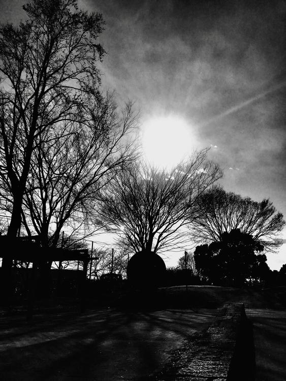monochrome park There - mamimumemami | ello