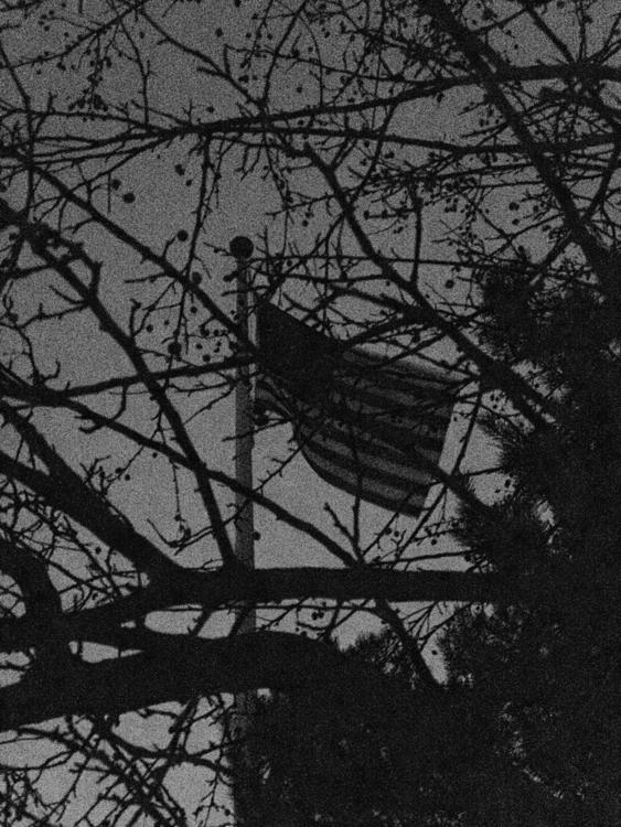 No. 23 — Death Nation 365projec - theopie | ello