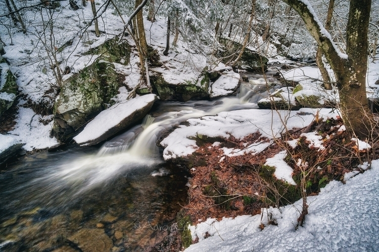 couple images Falls Trail hike  - aaroncampbell | ello