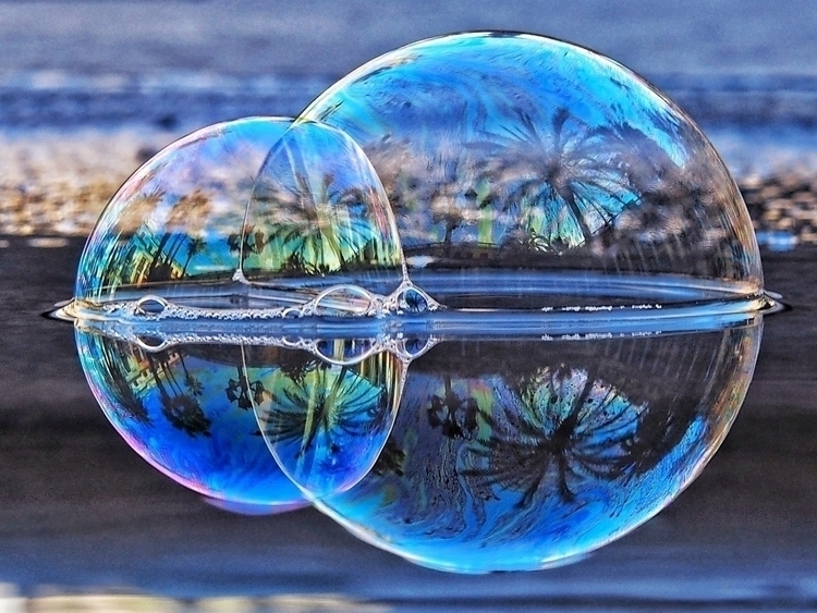 human lives illusions truths ?  - kyphotos | ello