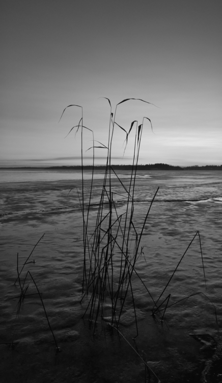 Wintry photography landscape ou - anttitassberg | ello