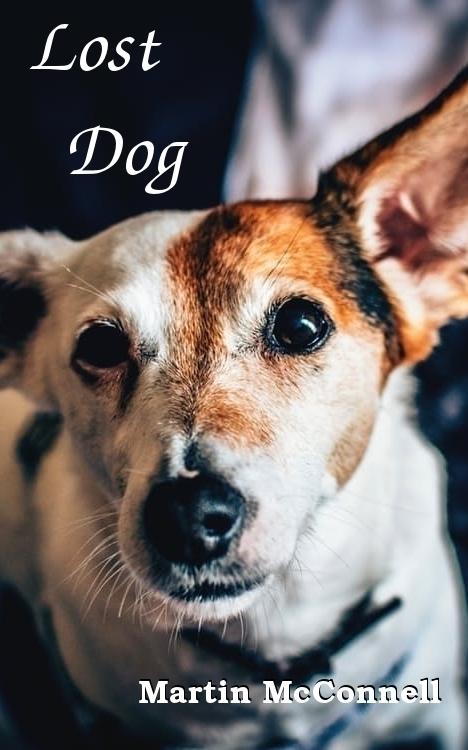 "Lost Dog Martin McConnell ""Ging - writefarmlive | ello"