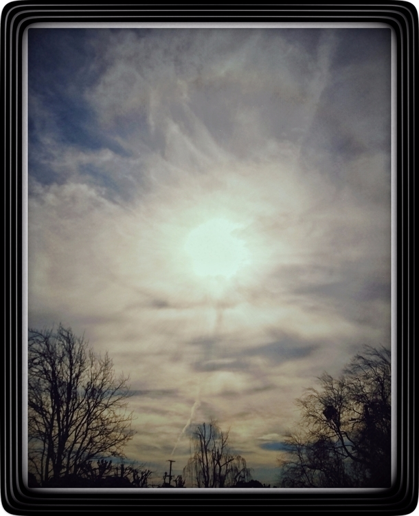 dizyne Post 30 Jan 2017 19:16:46 UTC | ello