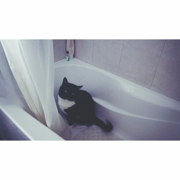 "-insert pun ""throwing baby bath - fallenkittie 