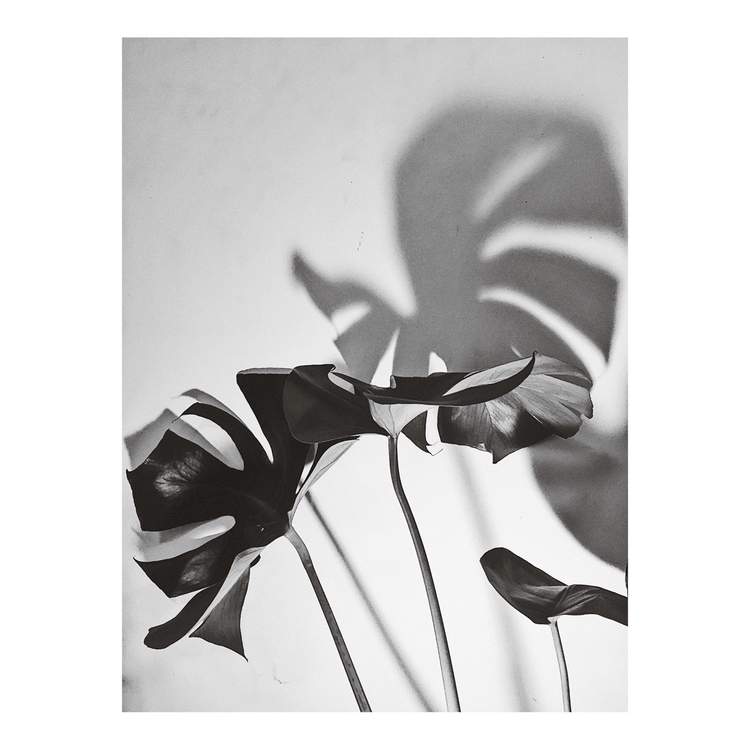 Today bw minimal photography pl - filmarra | ello
