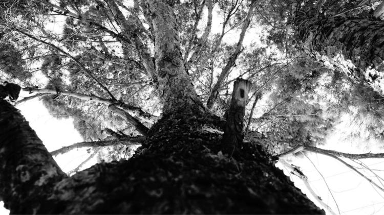 Abuelo photography Mexico - mystic_siva | ello