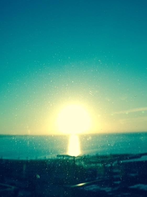 Sunrise Mushroom - jaydee-farshad | ello