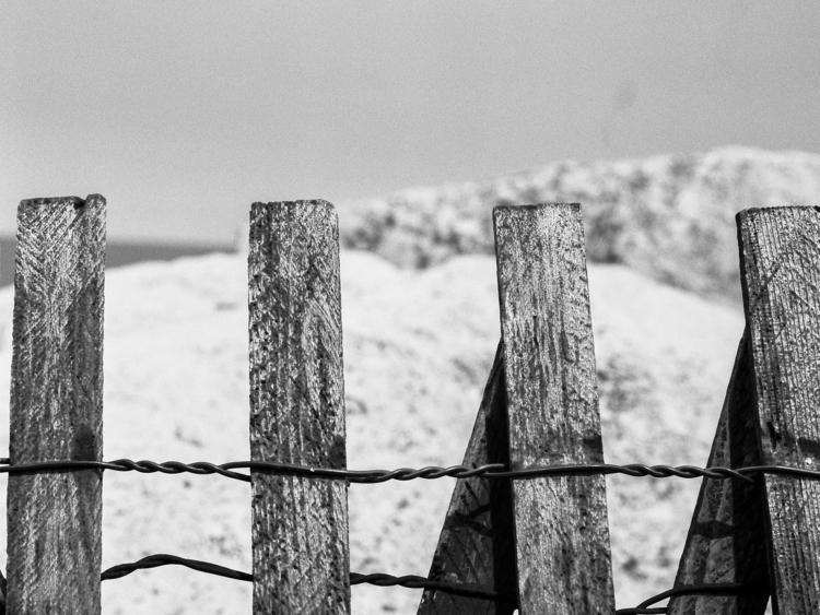 beach windswept waiting summer  - junwin   ello
