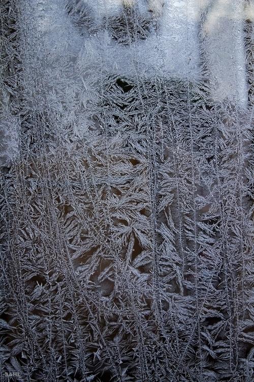 Art nature, ice window 6 Januar - jan_sahl | ello