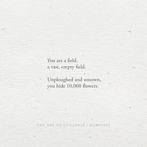 field / field, vast, empty fiel - kashyapi   ello