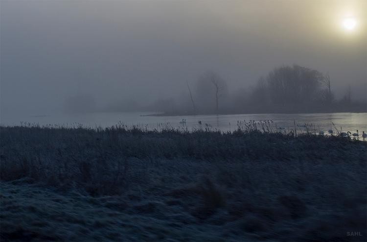 Cold morning kold morgen der ud - jan_sahl | ello