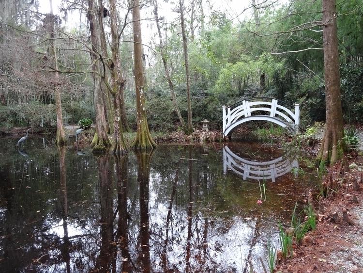 Futile Japanese Bridge swampy a - jmcampbell | ello