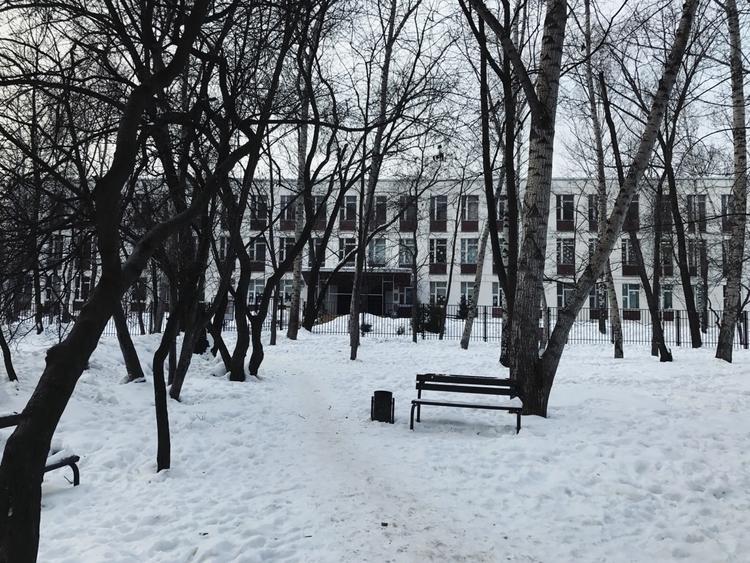 school 1st 5th grades. windows  - kseniaanske | ello