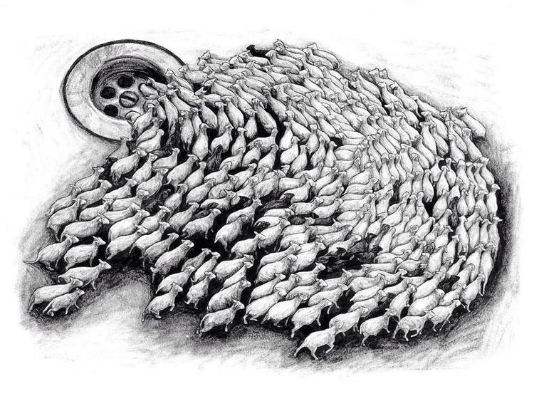 Sheep - artist - talltreesofparis - helliongallery | ello