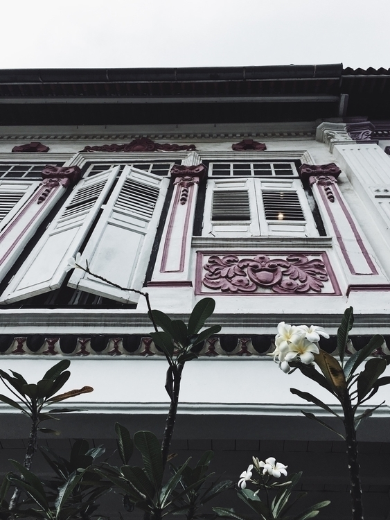 unique conservation shophouse a - louisaclare | ello