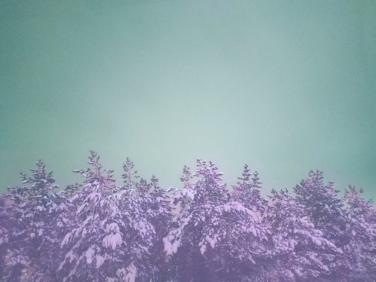 Enchanted Forest - nature, blue - eugenie_s | ello