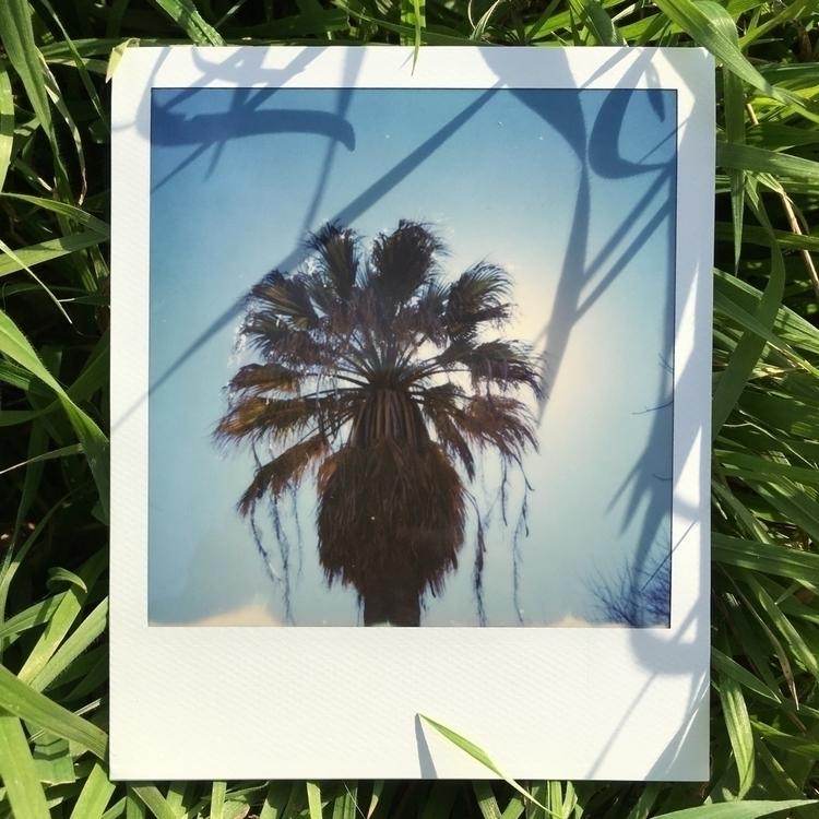 Photo number 5 - ingsoc2120 | ello