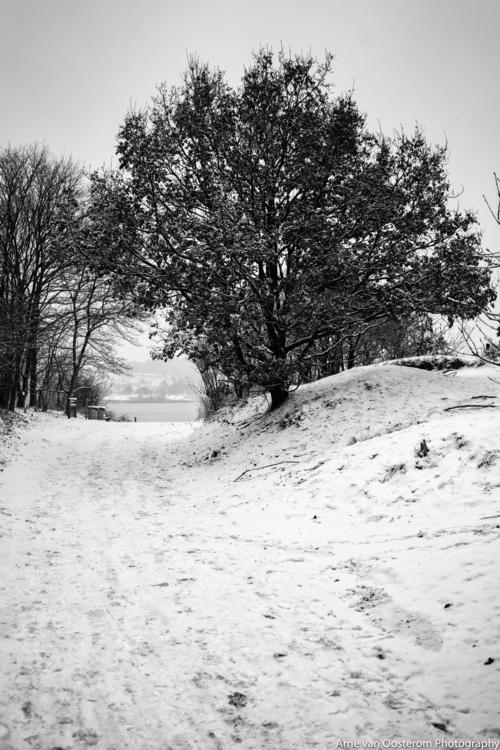 dunes - photography, blackandwhitephotigraphy - arnevanoosterom | ello