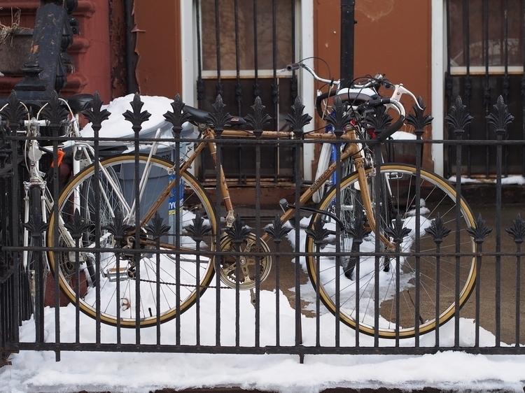Golden hang  - NYCSteelponies, BikesOfNYC - nycsteelponies | ello