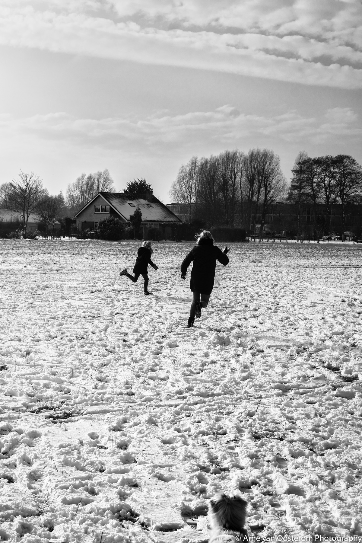 Snow fight  - arnevanoosterom | ello